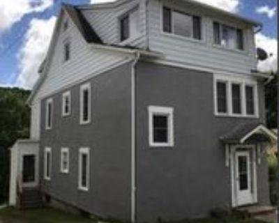 72 72 Virginia Ave 3, Johnson City, NY 13790 2 Bedroom Apartment