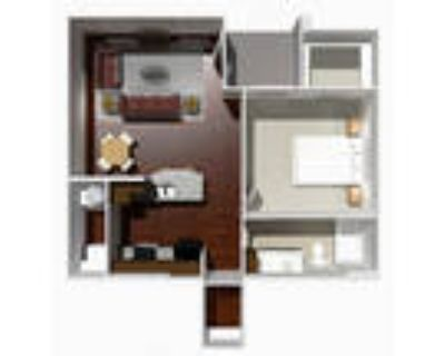 Austin Park Apartments - 1 Bed 1 Bath- Rose