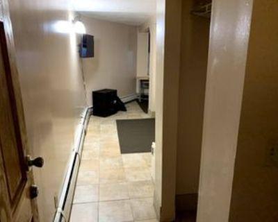 214 8th St Se #L3DT, Minneapolis, MN 55414 1 Bedroom Apartment