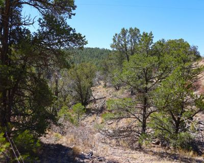 0.7 Acres for Sale in Timberon, NM