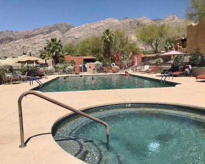 Serene Saguaro - NEW! 2/1 Dog-friendly /pool /hot tub/ fitness center - Catalina Foothills