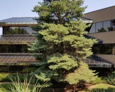 Panorama Falls Office Condominiums