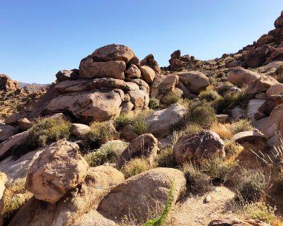 Undeveloped Joshua Tree Rocky Desertscape - 5 Acres, Joshua Tree, CA