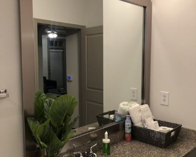 Atlanta Luxury 2 Bedroom // 2 Bath Brookhaven Beauty - DeKalb County