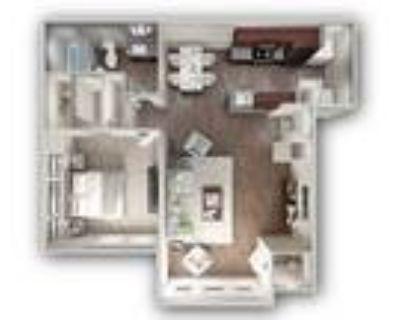 Timberlake Apartments - Maple