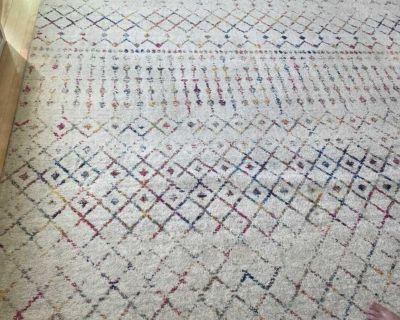10 x 12 boho area rug