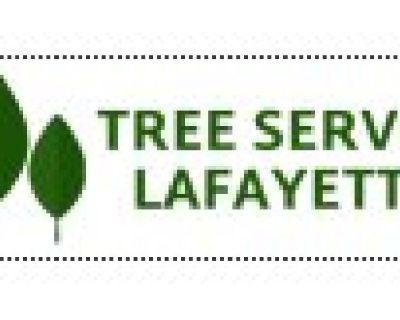Tree Service Lafayette