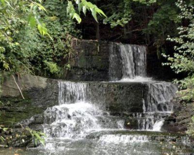 Backyard Waterfall and Cayuga Lake Views! - Northwest Ithaca