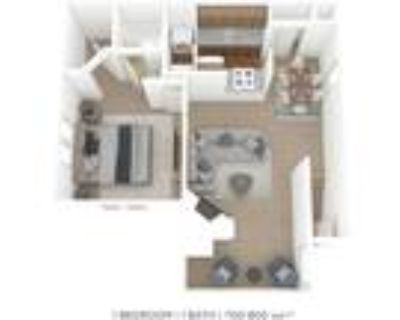 Grove at Stonebrook Apartments and Townhomes - One Bedroom 1 Bath