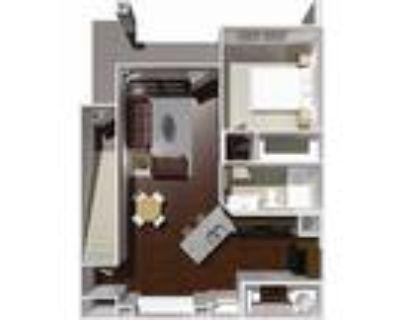 Austin Park Apartments - 1 Bed 1 Bath- Cherry
