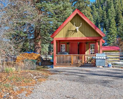 Riverside cabin w/private hot tub, wood stove, deck & river views - South Fork