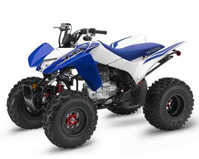 2021 Honda TRX250X w/SPORT CLUTCH ATV Sport Herculaneum, MO