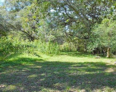 Peace, Greenery and Tranquility [Financing Available]- 505 County Rd 728C Angleton TX 77515
