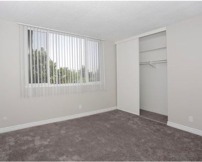 1 bedroom in 3 Bedroom apartment avaiable