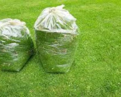 Wanted: fresh grass clippings