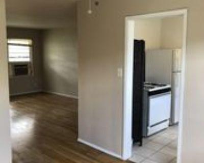 2477 Silver Lake Blvd #2477D, Los Angeles, CA 90039 1 Bedroom Apartment
