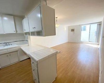 435 South Mariposa Avenue #207, Los Angeles, CA 90020 1 Bedroom Apartment
