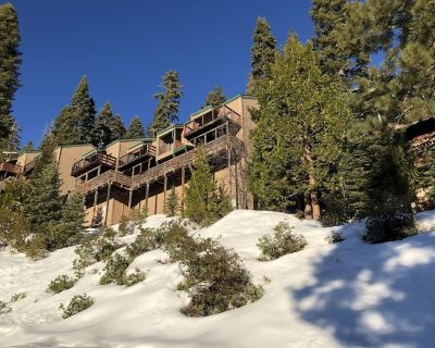 New!!! Year Round Vacation Location - Serene, Near Lakes, Hikes, Wilderness - Pinecrest