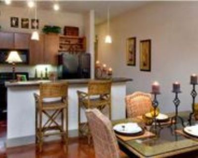 610 St Emanuel St, Houston, TX 77003 1 Bedroom Apartment