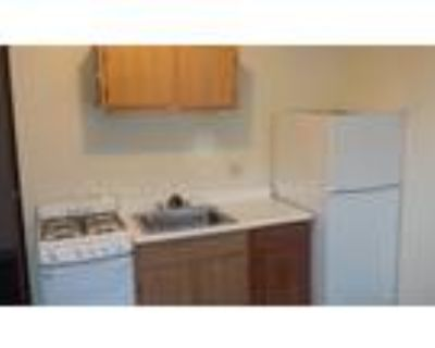 Gorgeous Huge 1Bed 1Bath Apartment Heat and Hot Water Inc New Kitchen