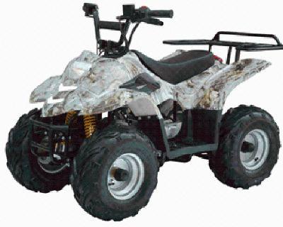 Powerwheels Off Road 110 cc Kids ATV