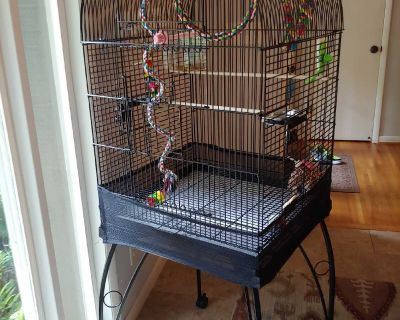 Black, Rolling Bird Cage