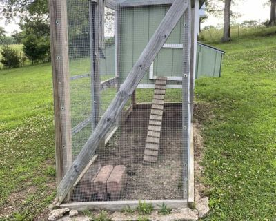 Stout Chicken Coop House with Run Area
