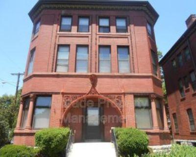 531 W Ormsby Ave, Louisville, KY 40203 2 Bedroom Condo