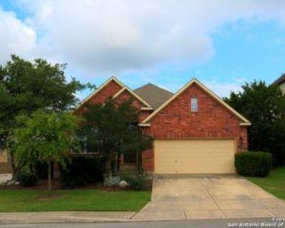 24003 Waterhole Ln, San Antonio, TX 78261 4 Bedroom House