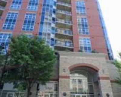 306, 110 7 Street SW #110 7 Stre, Calgary, AB T2P 5M9 1 Bedroom Apartment