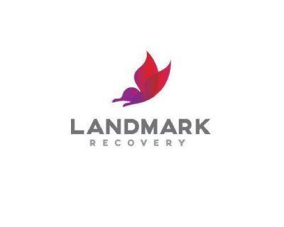 Landmark Recovery
