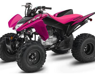 2021 Honda TRX250X ATV Sport Johnson City, TN
