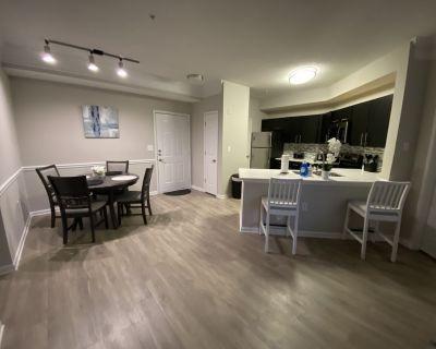 2 BR luxury apartment Buckhead/Brookhaven - Atlanta