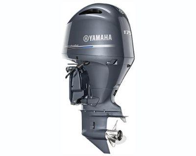 2019 YAMAHA F175