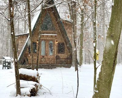 100 Acre Wood custom A-Frame cabin - Leesburg