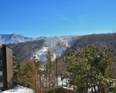 Spacious Condo with beautiful Mountain Views. 2 BR/2Bath sleeps 6 guests. - Chalet Village