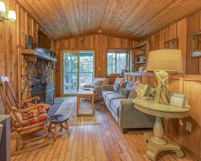 Cozy dog-friendly cabin near shops, restaurants, lake & skiing - Big Bear City