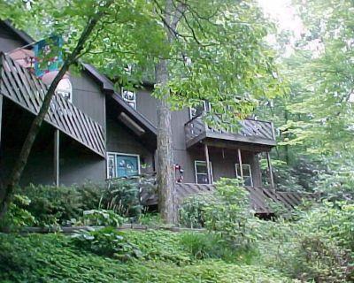 Treetops is a true mountain get-a-way - it's paradise! - Hendersonville