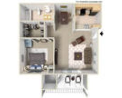 Wyoming Place Apartments - 1 Bed - A