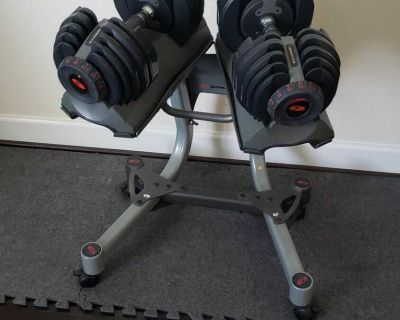 Bow Flex weights with stand