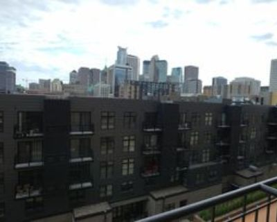 401 S 1st St #506, Minneapolis, MN 55401 1 Bedroom Condo