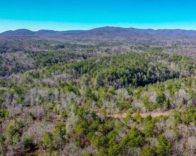 63.04 Acres for Sale in Dawsonville, GA