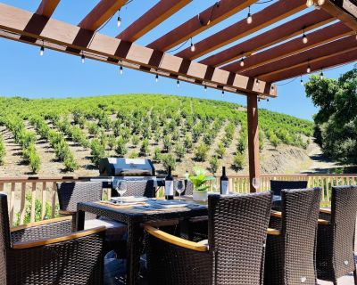 Temecula Orchard house in Wine County w/ hiking trails & free fruit picking - Temecula