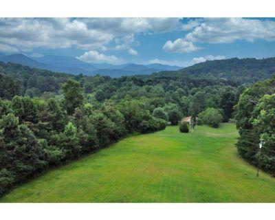 Charming Asheville Farmhouse Mtn vws/15m to dwntwn - Asheville