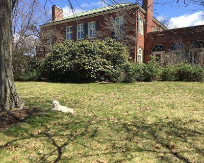 Historic Mansion Amazing Wonderland ! - Jamestown