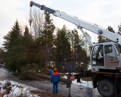 Sioux Falls Tree Service, Tree Removal Services Sioux Falls, SD