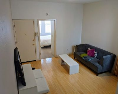 Beautiful furnished large two bedroom apartment in the heart of SF - South of Market