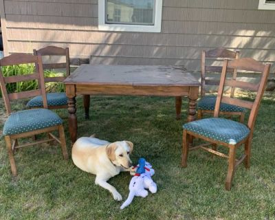 Table and chairs. FREE FREE FREE