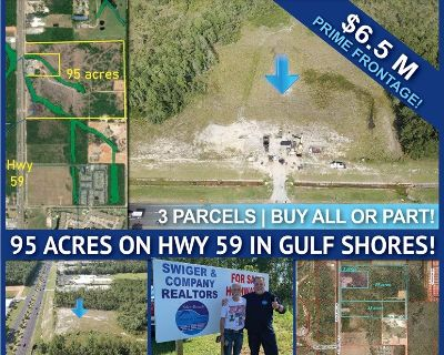 95 acres with 1100 ft Hwy 59 frontage in Gulf Shores