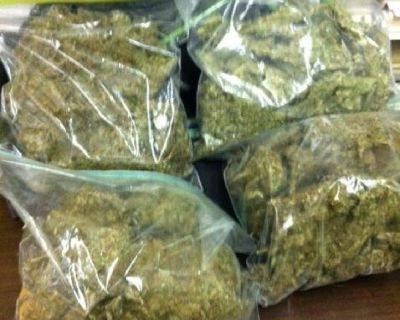 top quality cannabis